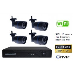 Economic surveillance system 4 cameras