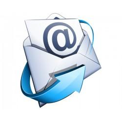 Sólo el dominio de correo electrónico