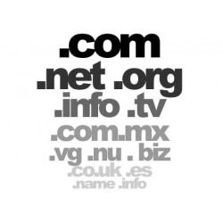 -Domínio, a UE, com, net, org, info, biz, nome, mobi